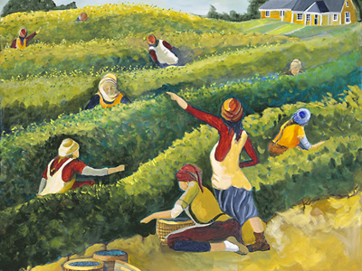 Blueberry Picking by Lurel Hibbert